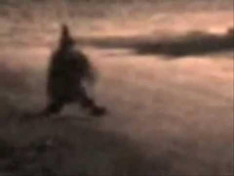Fantasmas Duendes Y extraterrestres part.2