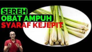 obat tradisional  syaraf kejepit dengan tanaman sereh