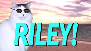 HAPPY BIRTHDAY RILEY! - EPIC CAT Happy Birthday Song