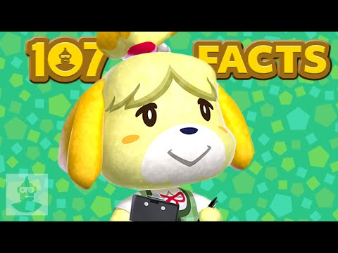 107 Animal Crossing Facts that YOU Should Know The Leaderboard