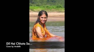 Dil Hai Chhota Sa Chhoti Si Aasha - Roja - A. R. Rahman - Minmini (Cover by Andalib)