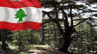 جولة سياحية في جبال الارز في لبنان