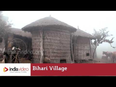 Bihari Village | India Video