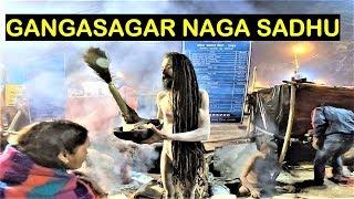 NAGA SADHU | GANGASAGAR MELA 2019 KOLKATA | GANGASAGAR MELA TRANSIT CAMP BABUGHAT KOLKATA