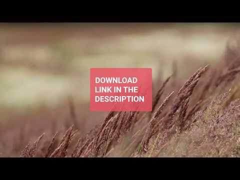 Xxx Mp4 Feather Free Stock Footage Dowanload Link Dowanload 3gp Sex