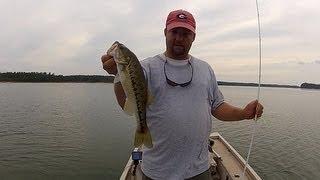 How to Fish a Fluke (Soft Jerkbait)