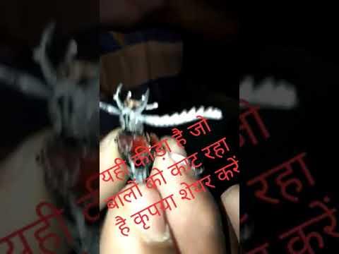 Xxx Mp4 Viral Video Bal Katne Wala Kida Pakda Gya Bihar Mai 3gp Sex