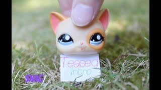 Littlest Pet Shop: {Teased} - Intro (REMAKE) Read Desc.