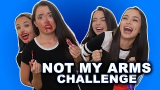 NOT MY ARMS CHALLENGE - Merrell Twins