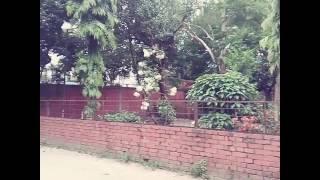 Sher-E-Bangla Nagar Govt. Gilrs High School.