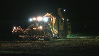 Night Harvest 2016 Ropa Tiger XL V8 Sound