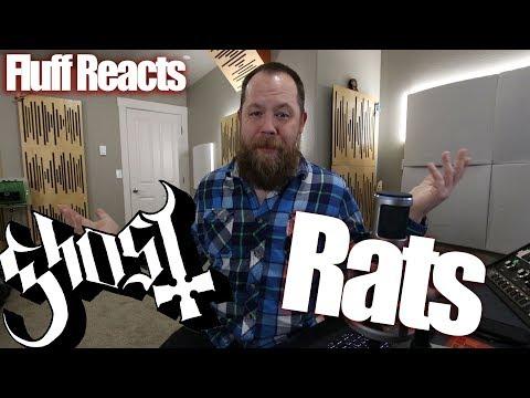 Xxx Mp4 Fluff Reacts Ghost Rats 3gp Sex