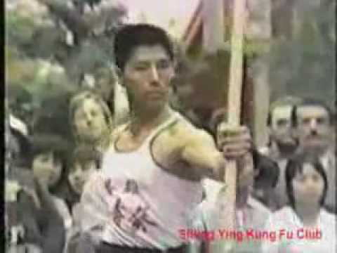 The Best of Choy Lee Fut Kung Fu