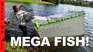 MEGA FISH CAGE back INTO THE POND