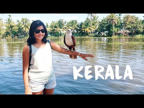 KERALA TRAVEL VLOG | Exploring Kochi and Alleppey