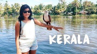 KERALA TRAVEL VLOG | Exploring Kochi and Alleppey