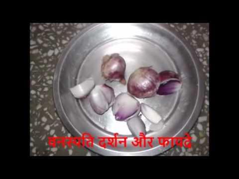स्तन बढाने के लिए प्याज़ का रस Breast Size Enlargement by Onion Juice