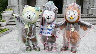 梅雨もOK、ゆるキャラに雨ガッパ みやざき犬が初披露