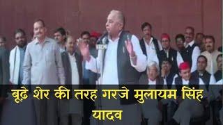 Mulayam Singh Yadav Samajwadi Party Leader Speech On 79th Birthday | Samajwadi Party |