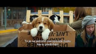 Psí poslání -  trailer s českými titulky