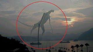 5 كائنات غريبة تم تصويرها في الواقع..!!