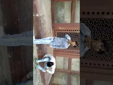 Xxx Mp4 Bhojpuri Hd Song 3gp Sex