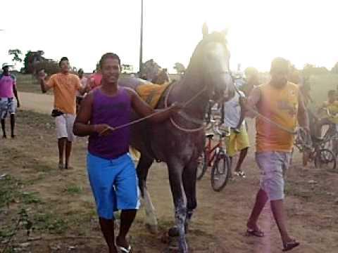 corrida de cavalo em cruz