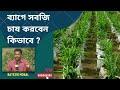 ব্যাগের মধ্যে বিভিন্ন ধরনের শাক সবজি চাষ পদ্ধতি | Variety of vegetables in the bag cultivation