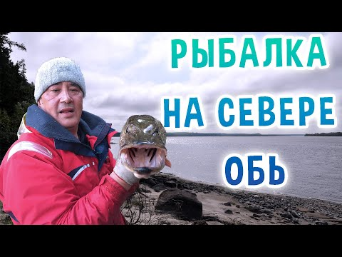 видео рыбалка на северной оби