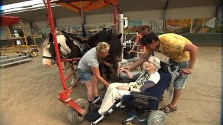 87-Year-Old Woman With Parkinson's Gets To Ride Horse For The Last Time