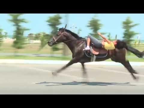 Xxx Mp4 Girl Horse Riding Shocking Video నేటి రుద్రమదేవి 3gp Sex