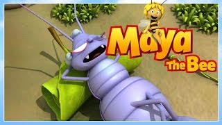 Maya the bee - Episode 66 - The outsider