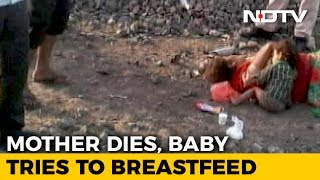 Mother Dead By Tracks, Wailing Infant Tries To Breastfeed