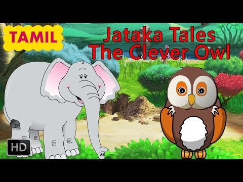 Jataka Tales - Tamil Short Stories For Children - The Clever Owl - Animated Cartoons For Kids