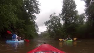 Cypress Creek After a Good Rain Florence. AL.  May 21 2015.