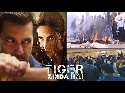 Xxx Mp4 OMG Protest Against Salman Khan's Tiger Zinda Hai At Raj Mandir Jaipur 3gp Sex