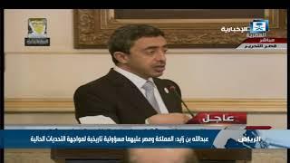 عبدالله بن زايد: المملكة ومصر عليهما مسؤولية تاريخية لمواجهة التحديات الحالية