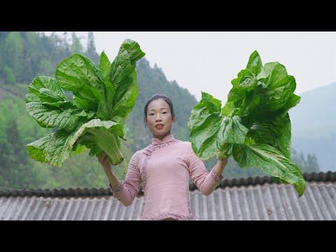 """每年� 不可辜負的美食""""無� 酸菜"""",在配上豬大腸炒酸菜,� �們的地區有沒有像我們這樣的吃法? Chinese Food Kimchi and pig s large intestine"""
