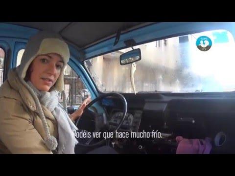 pedal-lady - Fannys stubborn 2CV