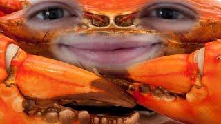 Entspannter Crabgot   Urgot Jungle [edit. Gameplay] [Deutsch]