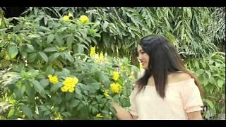 timro mayale badhera rakha | new cover video