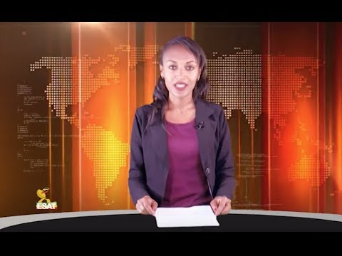 Xxx Mp4 ESAT Addis Abeba Amharic News Nov 08 2018 3gp Sex