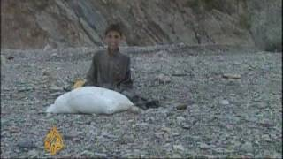 Poverty forces Afghan children into smuggling - 3 Oct 08