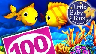 Numbers Song for Children | 10 to 100 | Nursery Rhymes | Original Song by LittleBabyBum!
