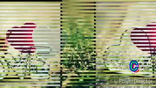 Wo Ladaki nahi zindagi hai meri song new version