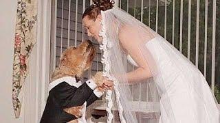 أغرب 5 حالات زواج فى العالم , لن تصدق انها حدثت .. !!
