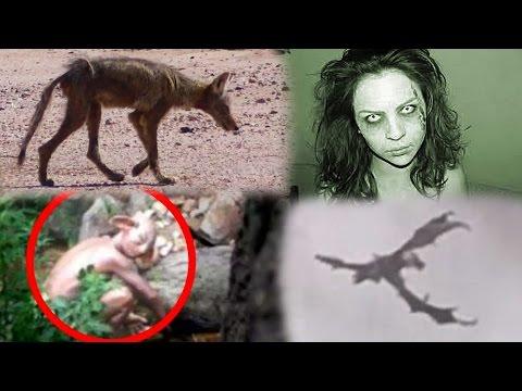 Proving These Creatures REAL FAKE Dragon Goblin Demon & Chupacabra