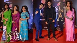 Team Swabhimaan At Colors Golden Petal Awards 2017 | Sangeita,Ankitta,Prachi,Saahil & Samridh IV