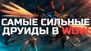 10 Самых Cильных Друидов в World of Warcraft