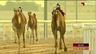 سباق الهجن:  سيف حضرة صاحب السمو أمير البلاد المفدي / الفترة الصباحية 22-4-2018